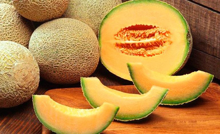 Exportación de melones crecerá en $20 millones