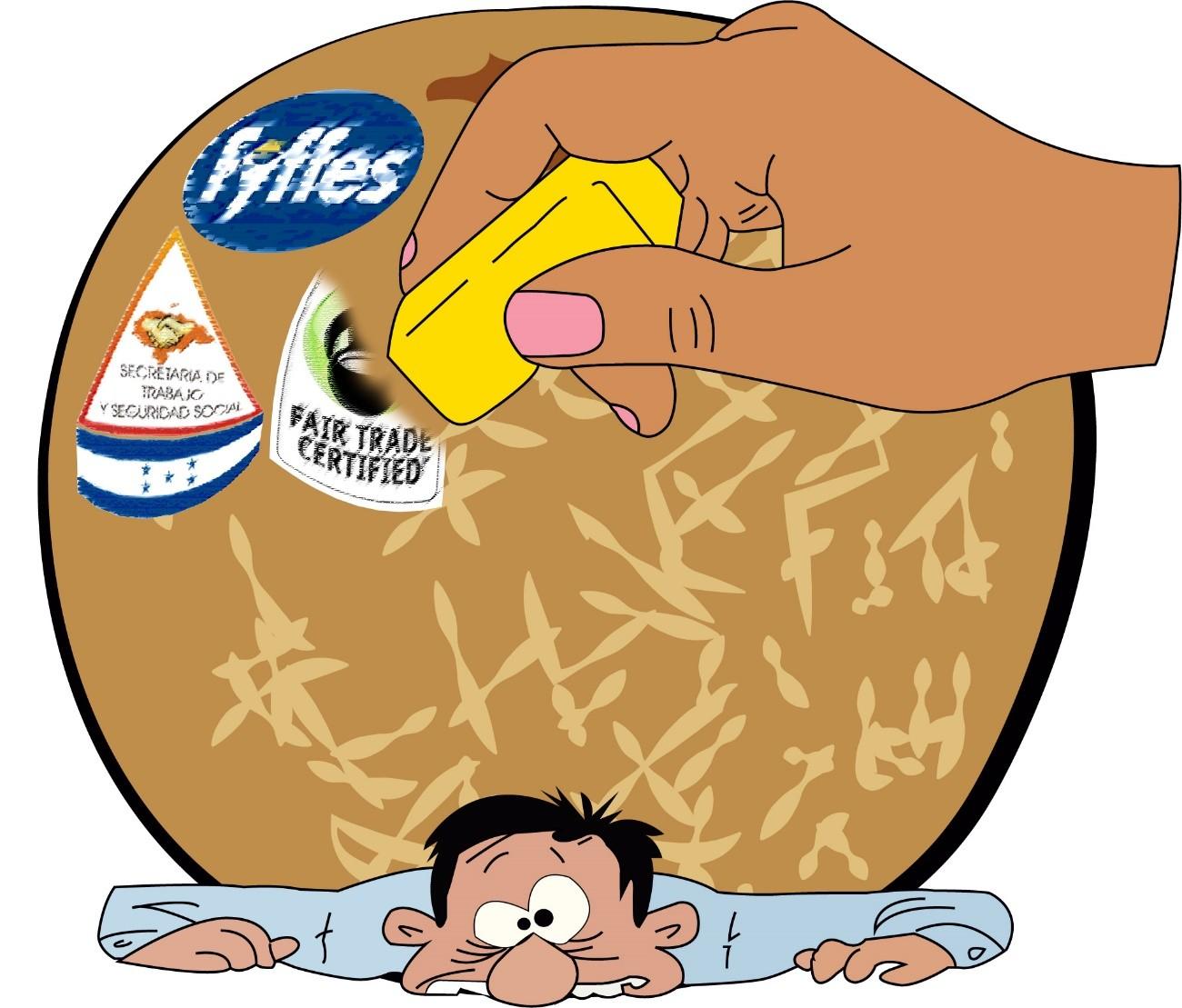Fyffes/SURAGROH es de-certificada por Comercio Justo USA